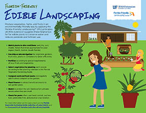 Edible Landscaping Infographic thumb